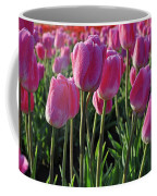 Morning Dew Tulips Coffee Mug