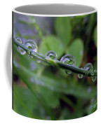 Morning Dewdrops 2 Coffee Mug
