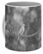 Morning Dove In The Rain Coffee Mug