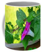 Morning Glories Coffee Mug
