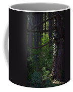Morning In The Pacific Northwest Coffee Mug