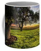 Morning In Wine Country Coffee Mug