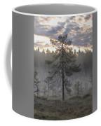 Morning Light At Saari-soljonen 7 Coffee Mug