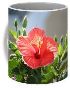 Morning Light Hibiscus Coffee Mug