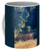 Morning Marsh Sunshine Coffee Mug