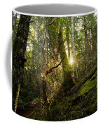 Morning Stroll In The Forest Coffee Mug