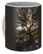 Morning Sun Through The Oak Coffee Mug