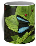 Morpho Butterfly Coffee Mug