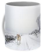 Moses Coffee Mug