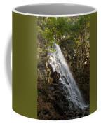 Mosher Hill Falls Coffee Mug