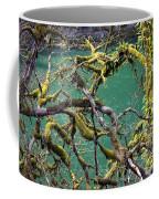 Moss And Trees Coffee Mug