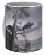 Moss Beach Coffee Mug