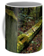 Moss Covered Fence Coffee Mug