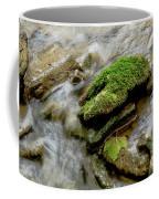 Moss Covered Rock Coffee Mug