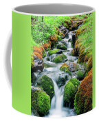 Moss Covered Stream Coffee Mug