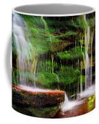Moss Falls - 2981-2 Coffee Mug