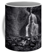 Moss Glen Falls - Monochrome Coffee Mug