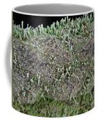 Moss Trees Coffee Mug