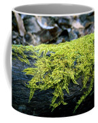 Mosss On Blackened Log Coffee Mug