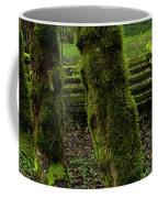 Mossy Fence Coffee Mug by Bob Christopher