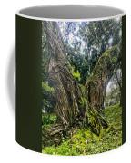 Mossy Old Tree Coffee Mug