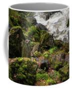 Mossy Rocks And Water Stream Coffee Mug