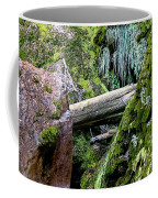 Mossy Rocks Coffee Mug