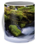 Mossy Rocks Oregon 3 Coffee Mug
