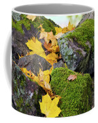 Mossy Stones And Maple Leaves Coffee Mug
