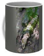 Mossy Tree Coffee Mug