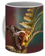 Moth At Sunrise Coffee Mug