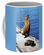 Mother And Baby Sea Lion At Oceanside  Coffee Mug