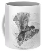 Mother Cat Washing Kittens Coffee Mug