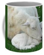 Mother's  First Love Coffee Mug