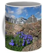 Mount Holy Cross With Wildflowers 2 Coffee Mug