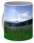 Mount Hood Behind Orchard Blossoms Coffee Mug