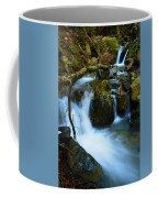Mount Tam Waterfall Coffee Mug