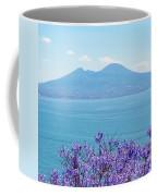 Mount Vesuvius 1 Coffee Mug
