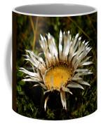 Mountain Thistle French Pyrenees Coffee Mug