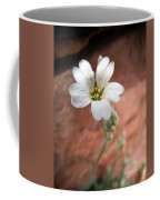Mountain Beauty Coffee Mug