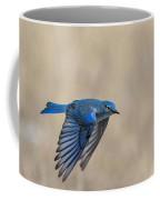 Mountain Bluebird Male In Flight Coffee Mug
