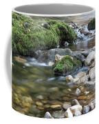 Mountain Creek Spring Nature Scene Coffee Mug