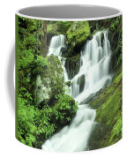 Mountain Falls Coffee Mug