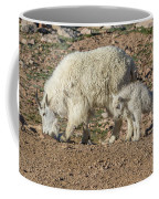 Mountain Goat Kid Stretches By Mom Coffee Mug