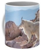 Mountain Goat Takes In Its High Altitude Home Coffee Mug