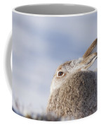 Mountain Hare - Scottish Highlands  #10 Coffee Mug