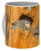Mountain Home Coffee Mug