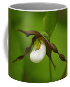 Mountain Lady's Slipper Coffee Mug