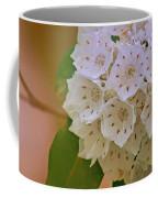 Mountain Laurel Coffee Mug
