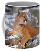 Mountain Lion On Snow-covered Rock Outcrop Coffee Mug